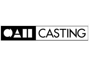 cat_casting